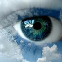 What Will Your Eyes See Today?