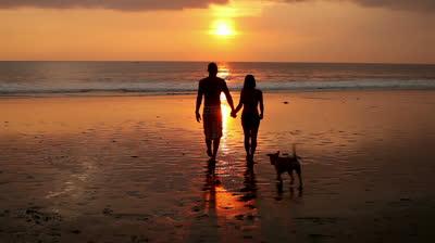 walk-in-the-beach-sunset-Favim.com-791527
